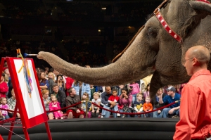 ringling bros barnum and bailey circus charleston